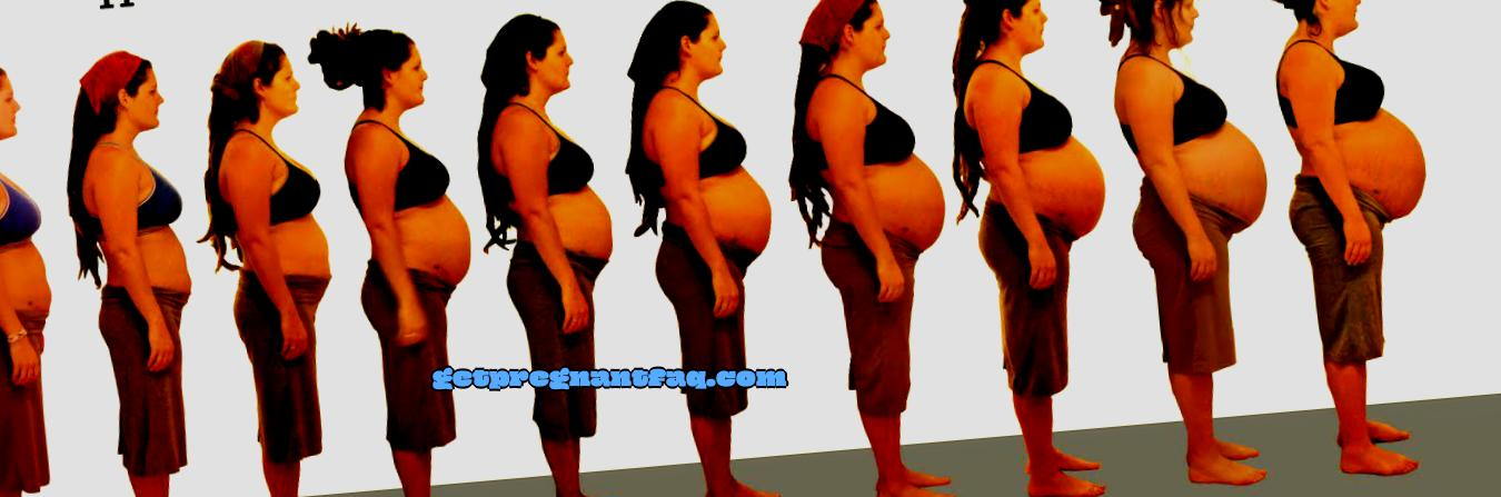 Learn how pregnancy looks for weeks in pictures.